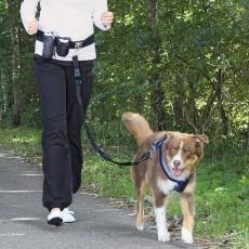 Centură talie cu lesă pentru câini până la 40kg