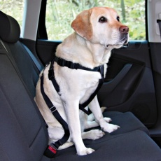 Ham auto de protecție pentru câini - M, 50-70 cm