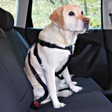 Ham auto de protecție pentru câini - XL, 80-110 cm