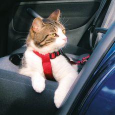 Ham de siguranță pentru pisici, utilizabilă în mașină - 20 - 50 cm