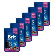 Pliculeț BRIT Premium Cat Chicken & Turkey 6 x 100 g