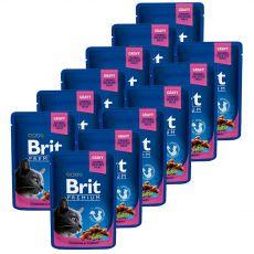 Pliculeț BRIT Premium Cat Chicken & Turkey 12 x 100 g
