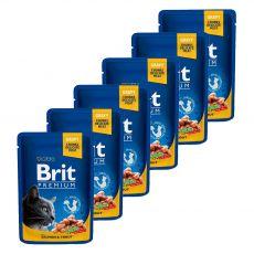 Pliculeț BRIT Premium Cat Salmon & Trout 6 x 100 g