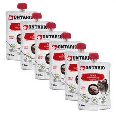Ontario Cat Pastă gustoasă de carne de miel 6 x 90 g