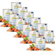 ISEGRIM Adult River: Somon cu seminţe de mei și afine 12 x 800 g