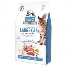 Brit Care Cat Grain-Free Large Cats 2 kg