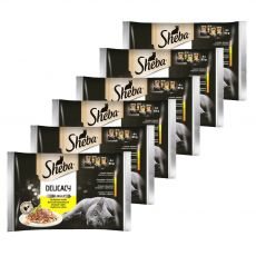 Sheba Delicacy Selecție de pungi din păsări de curte 6 x (4 x 85 g)