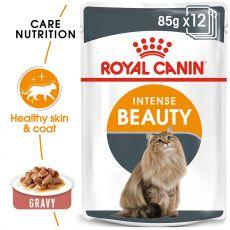 Royal Canin Intense BEAUTY 12 x 85g - hrană în pungă de aluminiu