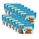 Stuzzy Cat pouches MULTIPACK cod + somon 12 x (4 x 100 g)