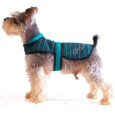 Vestă câine – turcoise și negru, XL