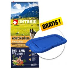 ONTARIO Adult Medium Lamb & Rice 12kg + CADOU