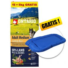 ONTARIO Adult Medium Lamb & Rice 15+5kg GRATIS + CADOU