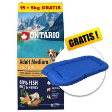 ONTARIO Adult Medium 7 Fish & Rice 15+5kg GRATIS+ CADOU