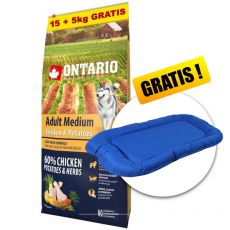 ONTARIO Adult Medium - chicken & potatoes 15+5kg GRATIS+ CADOU