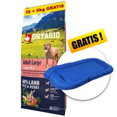 ONTARIO Adult Large - lamb & rice 15+5kg GRATIS + CADOU