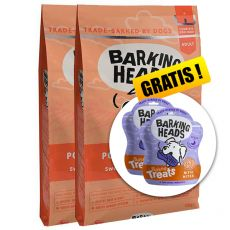 BARKING HEADS Pooched Salmon ADULT 2 x 12 kg + CADOU