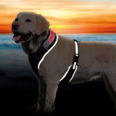 Ham de câine cu bandă reflectorizantă S-M, 45-60cm