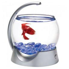 Acvariu sferic pentru peşti Betta 1.8 L - gri