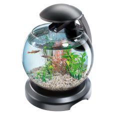 Acvariu pentru peşti Betta sau Goldfish - sferic 6.8 L