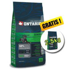 Ontario Junior Mare 13 kg + 2,5 kg GRATUIT