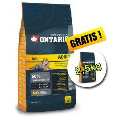 Ontario Adult Mini 13 kg + 2,5 kg GRATUIT