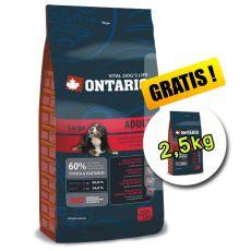 Ontario Adult Large 13 kg + 2,5 kg GRATUIT