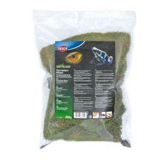 Muşchi pentru terariu pentru menţinerea umidităţii - 200 g