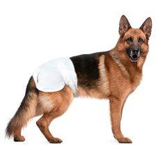 Scutece pentru câini - 12 bucăți, mărimea XL