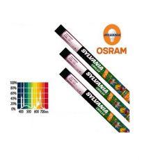 Tub fluorescent GRO-LUX pentru acvarii, 438 mm / 15 W