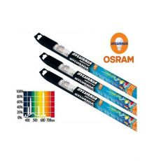 Tub fluorescent AQUASTAR pentru acvarii 590 mm / 18 W