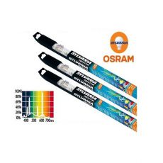 AQUASTAR 740 mm / 25 W - tub fluorescent