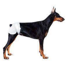 Scutece pentru câini- 12x, mărimea M - L
